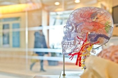 Harnessing Neuroplasticity in the Brain as a Way to Manage Addiction Triggers