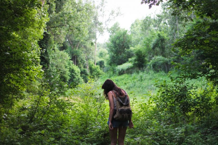 Harnessing the Healing Power of Nature in Dual Diagnosis Treatment